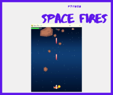 The 2D shooting game space zooter